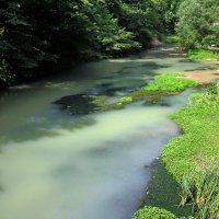 Молочные реки,кисельные берега.... :: Виолетта