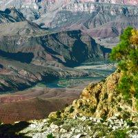 Река Колорадо :: Ольга Маркова