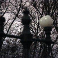 фонарь :: Александр Белянин