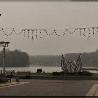 В белесые сети тумана... :: Nonna
