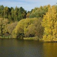 Осень :: Олег Чернов