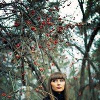 Осень :: Evgeniy Lezhnin