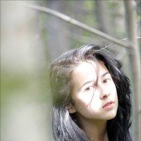 притягивающая солнце :: Татьяна Белова