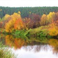 Краски осени :: Геннадий Ячменев