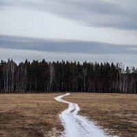 Дорога в лес :: Максим Галимов