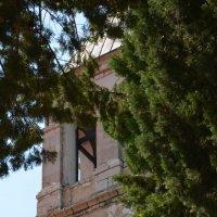 Колокольня монастыря :: Татьяна Адамович