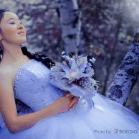 В лунном свете :: Надежда Широкова