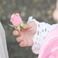 Цветочек для невесты. :: Андрей Соколов