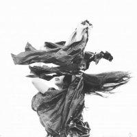 Танец ветра :: Катерина Мишкель