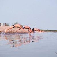 как дельфины) :: Вероника Галтыхина