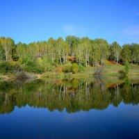 лес и вода :: Георгий Муравьев
