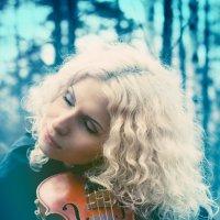 Violin :: Евгений Fillakteria
