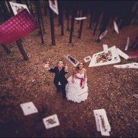 Свадьба Алисы :: Виктор Бабинцев