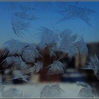 Зима :: Natalie Osipovа