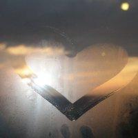 Сердце :: светлана мартынова