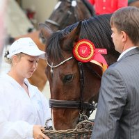 Grand Prix 12 :: Роман Бычков