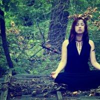 Утро в лесу :: Вита Ярмолюк