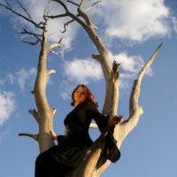 Ведьма :: Вита Ярмолюк
