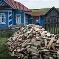 Из альбома Лето на даче :: Александр Семенов
