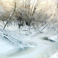 Нежность зимы :: Владимир Новиков