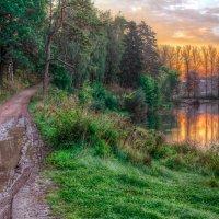 Утро возле плотины :: Юлия Холодкова