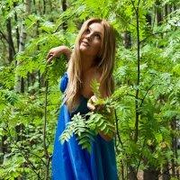 в лесу :: Evgeniy Evteev
