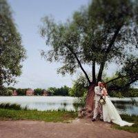 фото и видео на свадьбу :: Владимир Нагорский