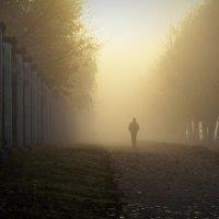 туман_2 :: Татьяна Соловьева