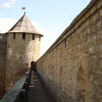 Ивангородская крепость :: Ольга Мореходова