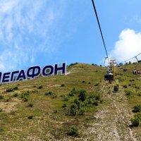 масштабная реклама Мегафона :: Ксения Сутырина