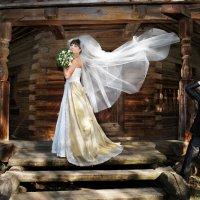 Свадебные зарисовки Костромы :: Владимир Копылов