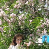 В цветах :: Igor Antipin