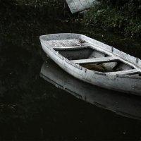 на грани... :: Сергей Долженко