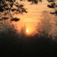 Восход и туман :: Максим Зал