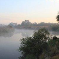 Река Клязьма :: Максим Зал