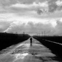 Дорога в Облака :: Евгений Лисниченко