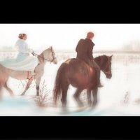 свадьба зимой :: Максим Крутов