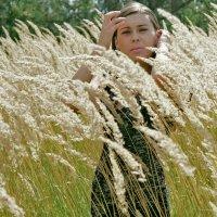 сентябрьские травы :: Владимир Безгрешнов