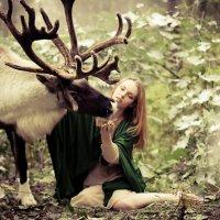 Сказочный лес :: Марина Титова