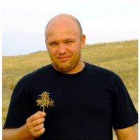 Колючка Чертополоха :: Дмитрий Скубаков