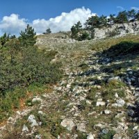 Дорога в горы :: Дмитрий С.
