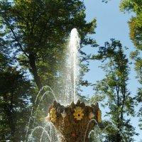 фонтан в Летнем саду :: Алексей Кудрявцев