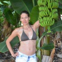 Банановая плантация :: Алла )