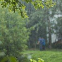 дождь :: Юлия Трибунская