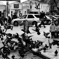 Всюду жизнь :: Павел Шаповалов