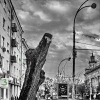 Урбанизация :: Павел Шаповалов