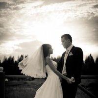 Свадьба Димы и Ксюши :: Дмитрий Кабанов