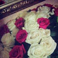 розы :: Milena Salt