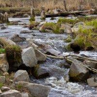 Когда-то здесь была река.... :: Денис Занкин