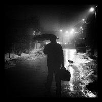 В темноте все кошки серы... :: Александр Фирсов